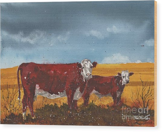 Hereford Cow And Calf Wood Print
