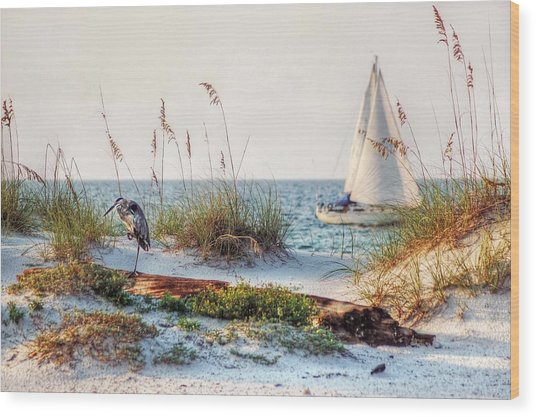 Heron And Sailboat Wood Print