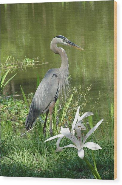 Heron And Swamp Lily Wood Print