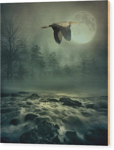 Heron By Moonlight Wood Print
