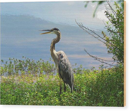 Heron On Lake Wood Print