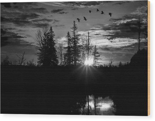 Herons In Flight - Black And White Wood Print