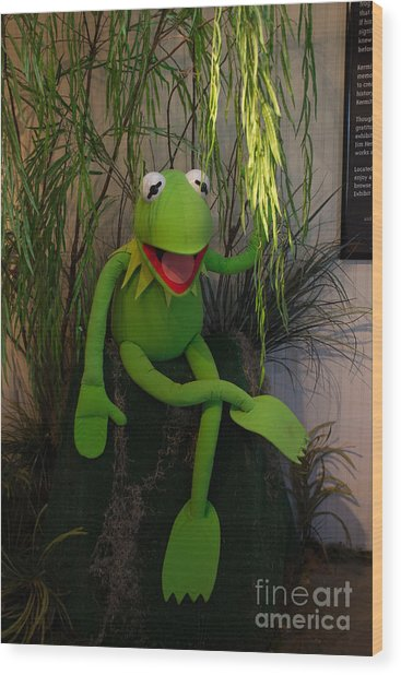 Hi Ho  Kermit The Frog Here  Wood Print