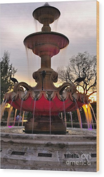 Hialeah Fountain Wood Print by Andres LaBrada