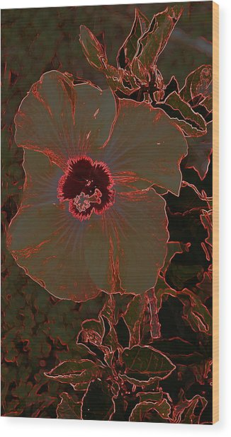 Hibiscus At Play  Wood Print