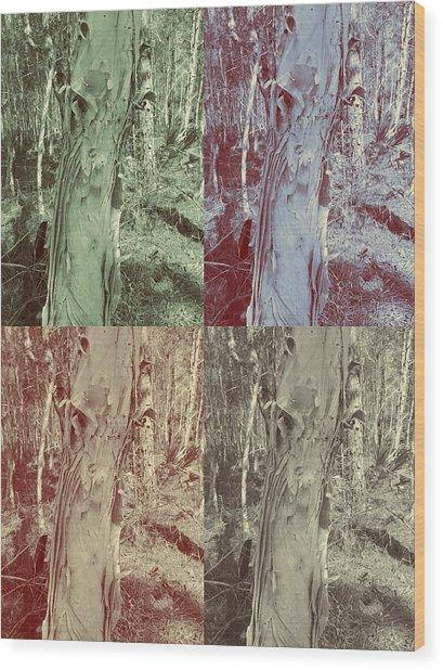 Hidden  Wood Print by Chasity Johnson
