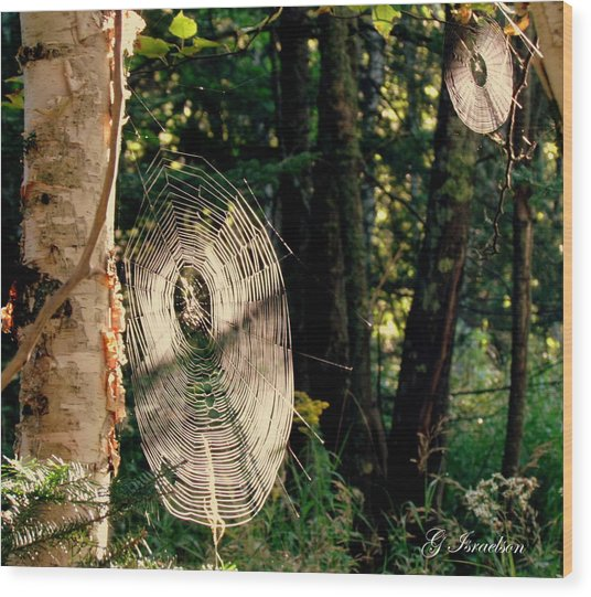 Hidden Secrets Wood Print