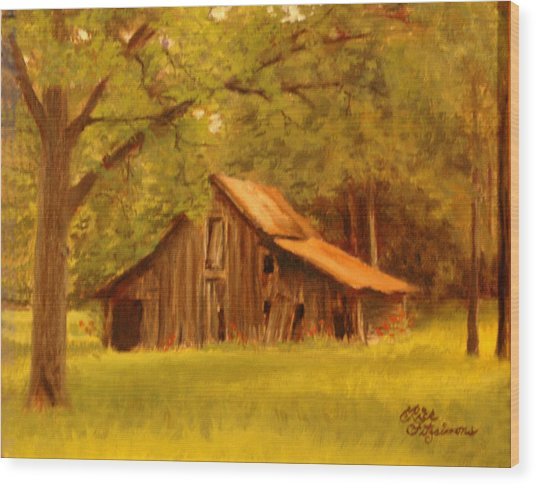 Hidden Treasure Wood Print