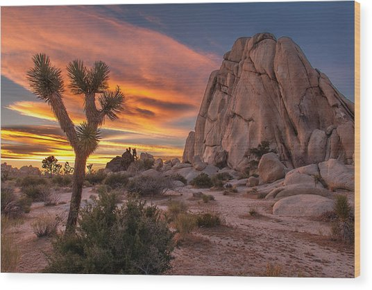 Hidden Valley Rock - Joshua Tree Wood Print