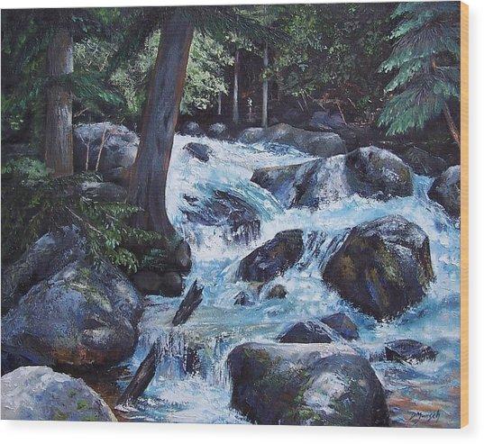 Hidden Waterfall Wood Print by Donna Munsch