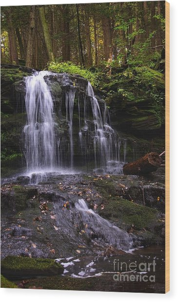 Hidden Waterfalls Of Wayne County I Wood Print