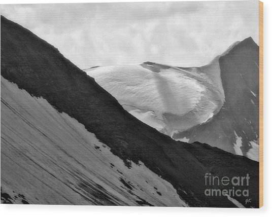 High Alpine Region In Austria Wood Print