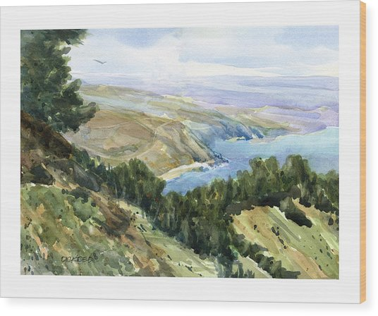High Coastal View Wood Print
