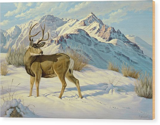 High Country Buck Wood Print