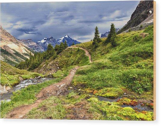 High Mountain Trail Wood Print