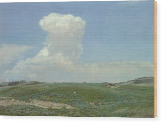 High Plains Big Sky Wood Print by Terry Guyer