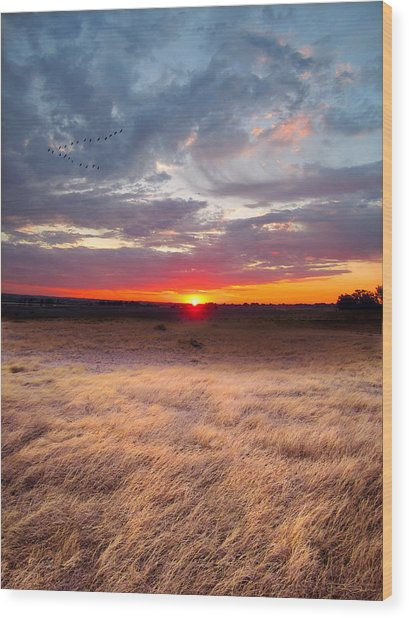 High Plains Sunrise Wood Print by Ric Soulen
