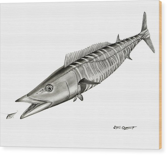 High Speed Wahoo Wood Print