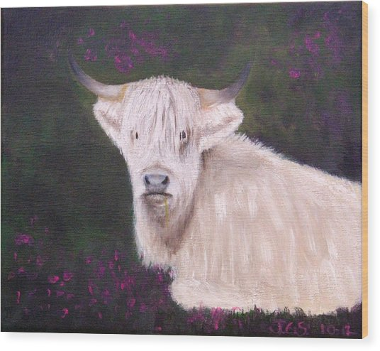 Highland Cow In The Heather Wood Print