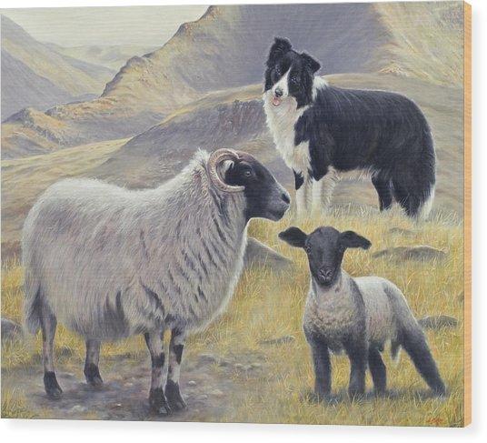 Highland Spirit Wood Print