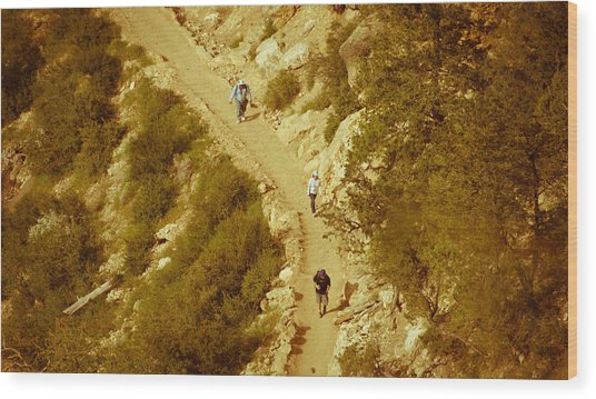 Hikers In Canyon Wood Print by Nickaleen Neff