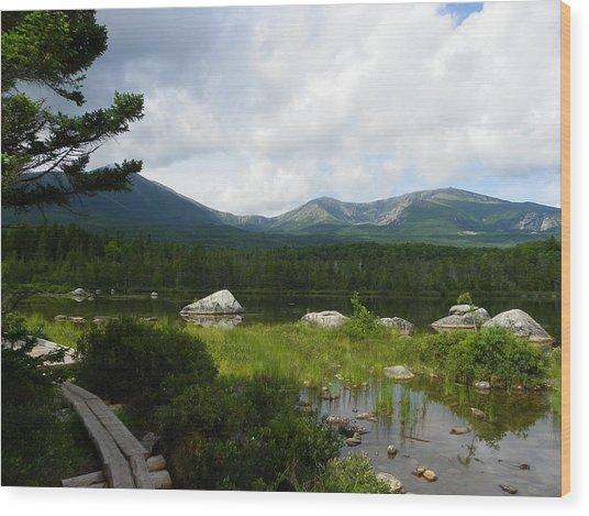 Hiker's Reward Wood Print