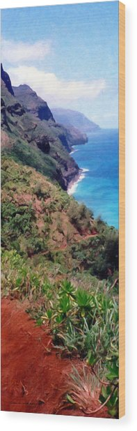 Trail To Kalalau Wood Print