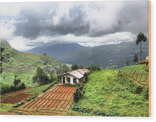 Hill Country Sri Lanka Wood Print by Sanjeewa Marasinghe