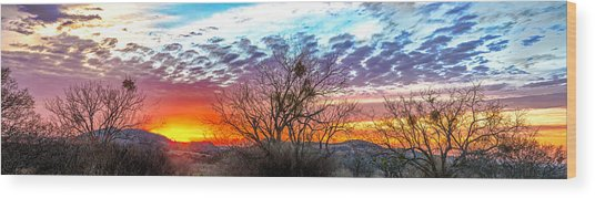 Hill Country Sunset Wood Print by Wally Taylor