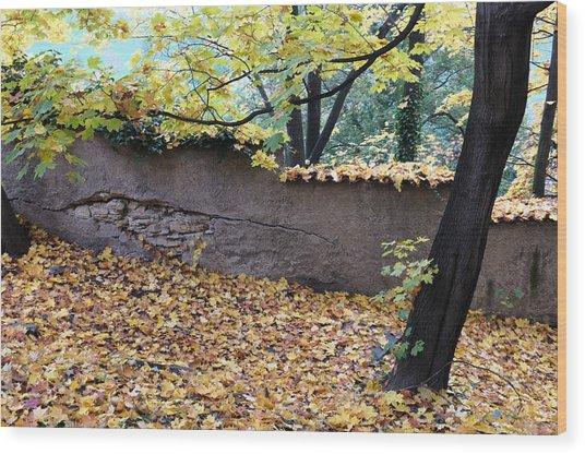 Hill In Prague Wood Print by Gianfranco Evangelista