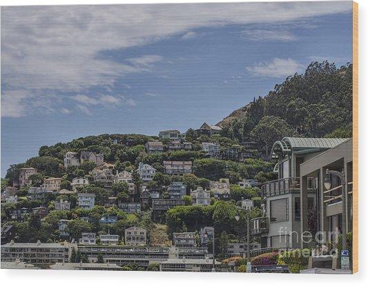Hills Of Salsalito Wood Print