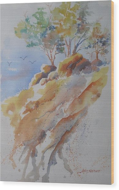 Hillside Rocks Wood Print