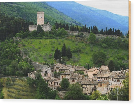 Hillsides Of Assisi Italy Wood Print