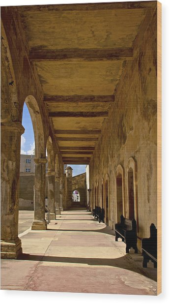 Historic Archways Wood Print