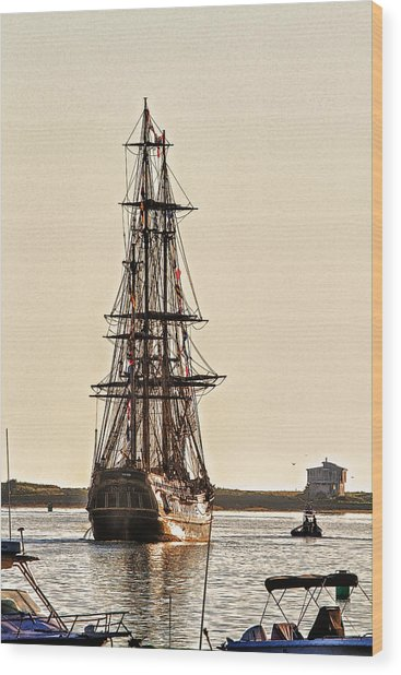 Hms Bounty In Plymouth Harbor Wood Print