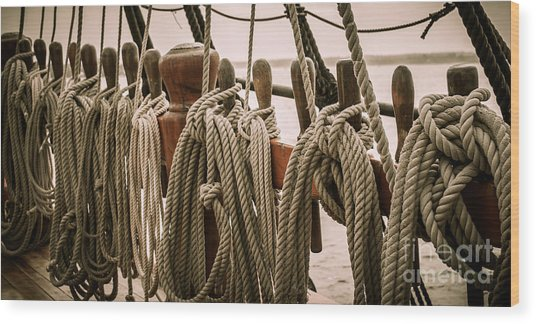 Hms Bounty Riggins And Ropes Wood Print