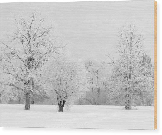 Hoar Frost Morning Wood Print