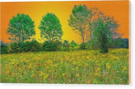 Hocking Hills 7 Wood Print