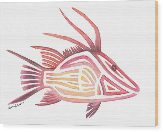 Hogfish Wood Print