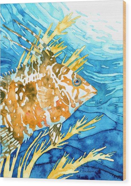 Hogfish Portrait Wood Print