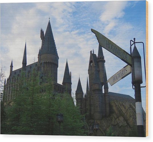 Hogwarts Castle With Signs Wood Print