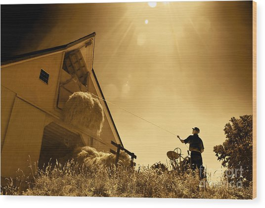 Hoisting Hay Wood Print