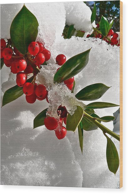 Holly Berries Wood Print