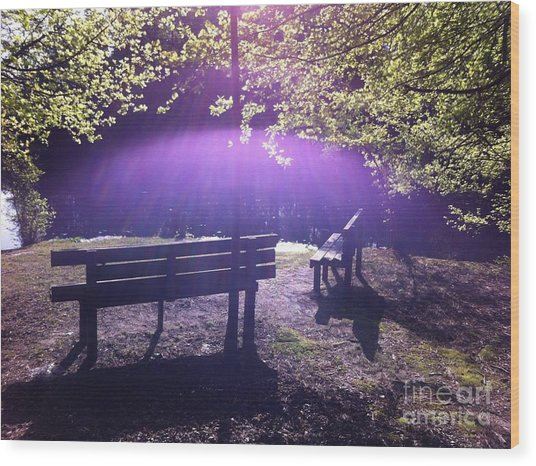 Holy Spirit Appears Sunday Morning Wood Print