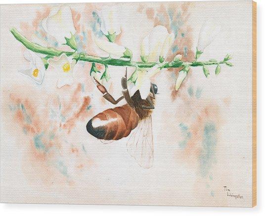 Honey Bee Wood Print