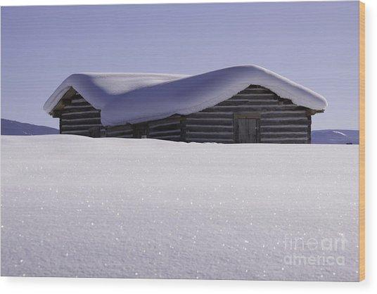 Honey Where Is The Snow Shovel? Wood Print