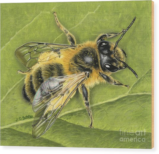Honeybee On Leaf Wood Print