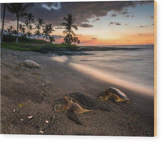Honu Sunset Wood Print by Robert Yone