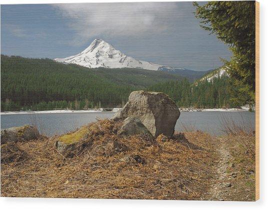 Hood Rock Wood Print