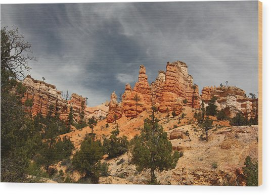 Hoodoos At Mossey Creek Trail Wood Print